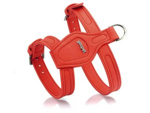 Harnais rouge pour chien