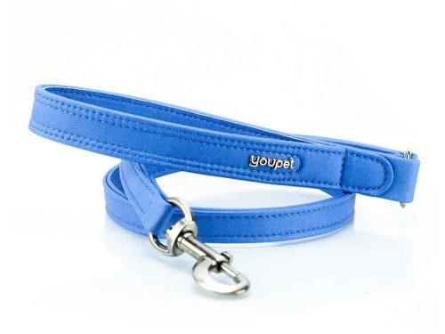 Laisse solide pour chien bleu