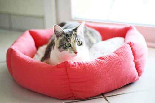 Corbeille octogonale pour chat