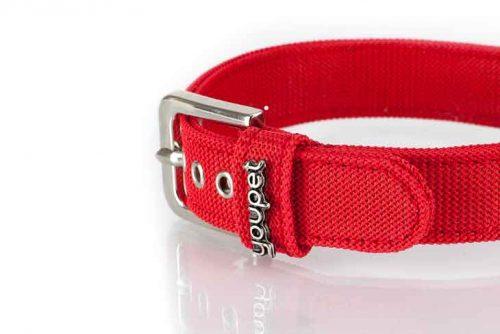 Collier nylon rouge chien YOUPET