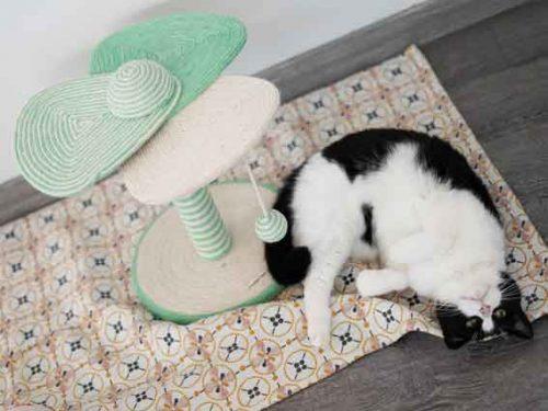 Poteau griffoir TYROL pour chat