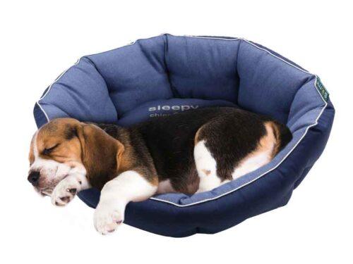 panier confort pour chien